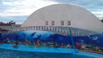 Крыша дельфинария Запорожская обл. с. Кириловка